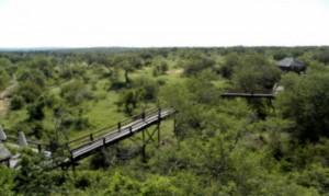 Kruger Bridge